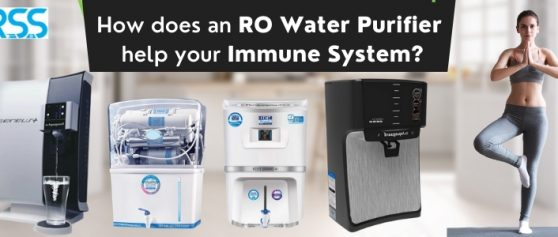 How does an RO Water Purifier help your Immune System?